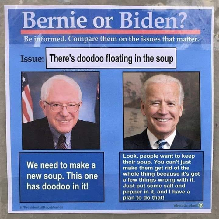 Bernie vs Biden