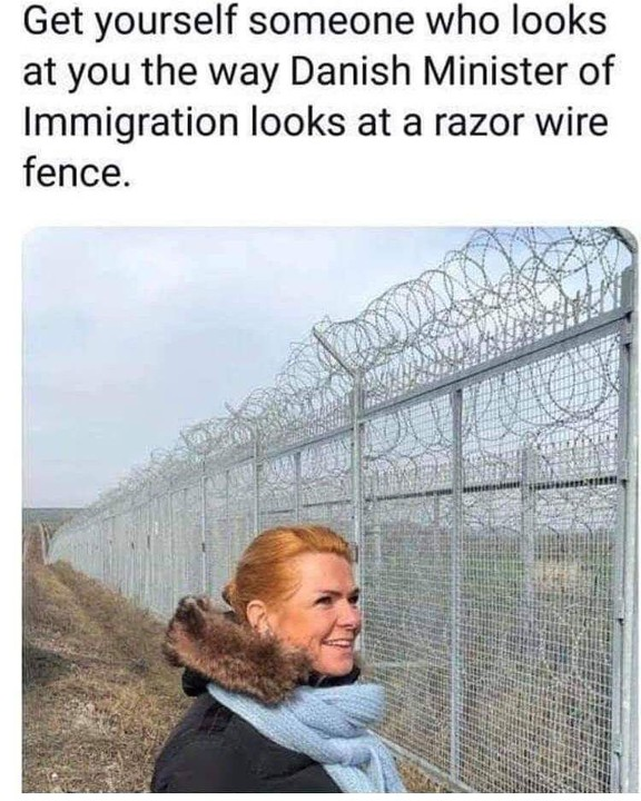 What is so interesting about that razor wire?