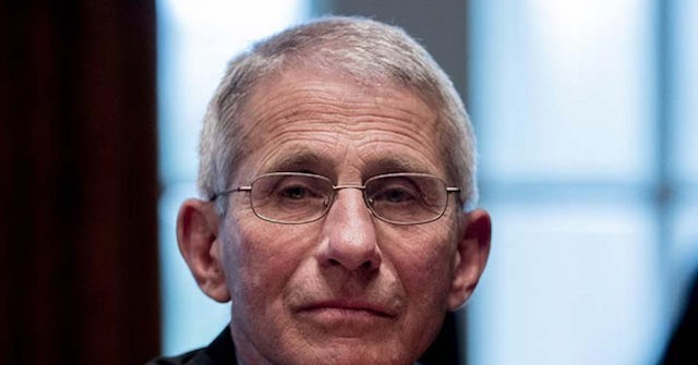 Fauci on CNN's Tapper Show: Earlier Mitigation Could Have Saved Lives