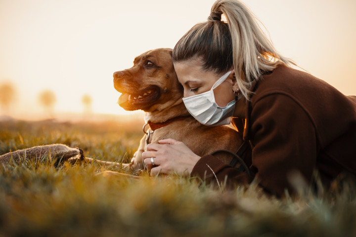 Dogs to blame for COVID-19? No way, says new study