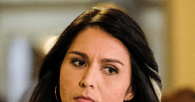 Tulsi Gabbard still in the race