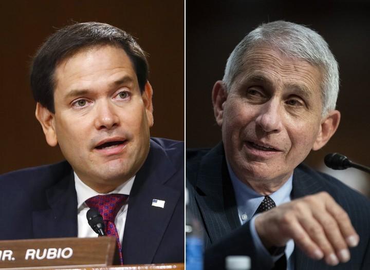 Marco Rubio accuses Fauci of lying about masks, coronavirus, herd immunity during anti-lockdown online rant
