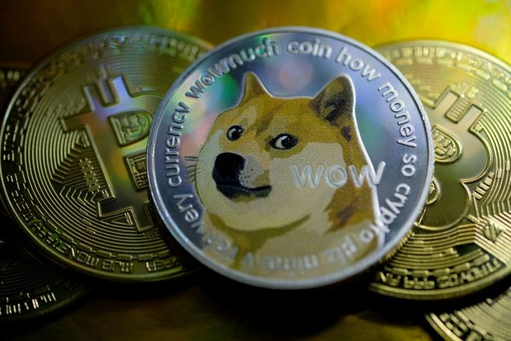 Mysterious Doge 'Whale' Account Continues To Hold Despite Market Crash